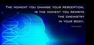 Change Your Perception