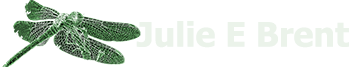 Julie E Brent - Transformational
