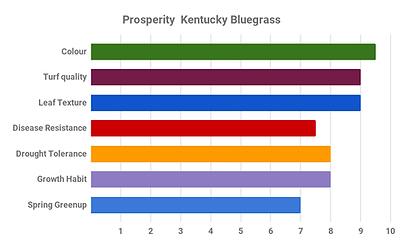 Prosperity  Kentucky Bluegrass.png