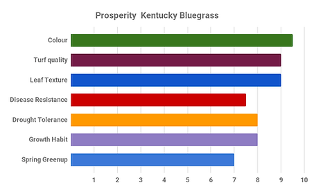 Prosperity  Kentucky Bluegrass.png