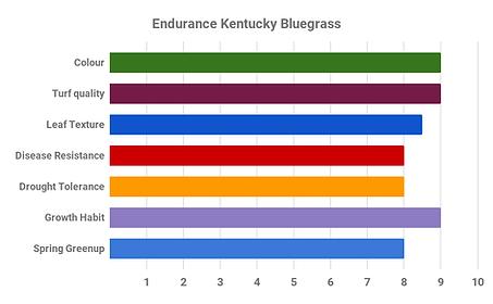 Endurance Kentucky Bluegrass.png