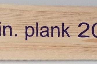 24 IN PLANK