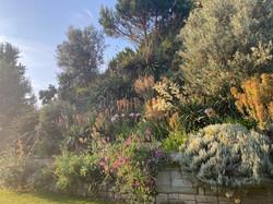 Summer Recep Windsor Castle 2021 Flowers Moat Garden