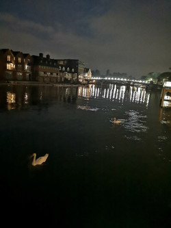 Windsor Boat Trip 2019 Swans at night