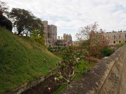 Windsor & Eton Castle Tour October 12