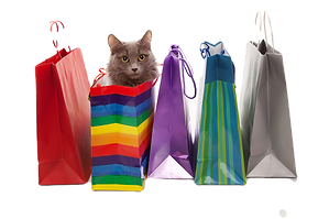iStock-cat%20shopping%20with%20bags_edit
