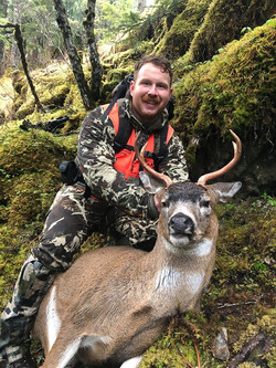Deer hunt Prince william sound