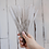 Thumbnail: Straw Brush