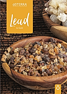 Lead guide cover image.png