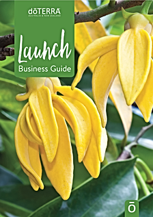 Launch guide cover image.png