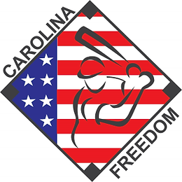 OriginalFreedomLogo Resized.png