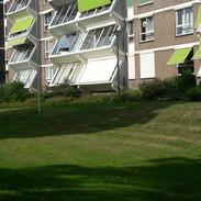 Motto- Randwijk