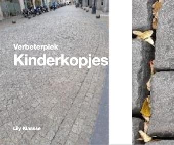 Al meer dan 20 inzendingen binnen voor 'verbeterplekken' in Maastricht.