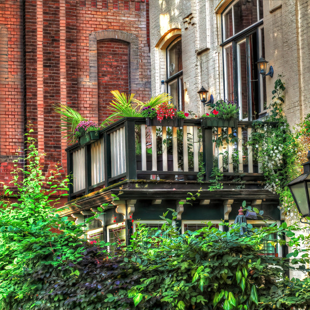 Motto- Groenste balkon