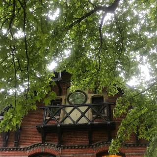 Motto- Balkon in groen