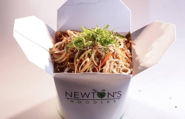 Newton's Noodles Fuzu