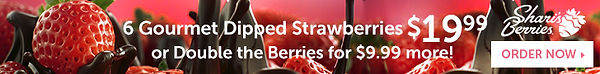 Sharis Berries 2019