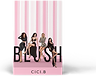 blush mock up_edited.png