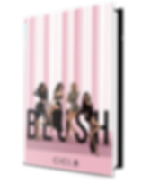 mockup Blush clear background.png