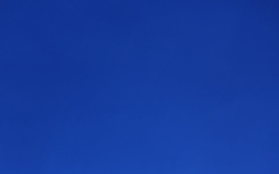 Blue Portrait _edited.jpg