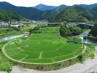 課長のバイクで旅ブログ~有田川あらぎ島~