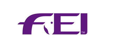 FEI_logo.jpg