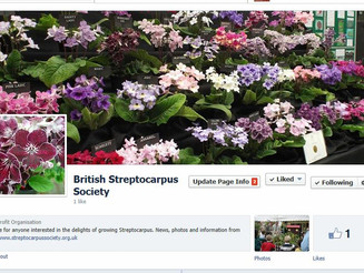 BSS Facebook page now published