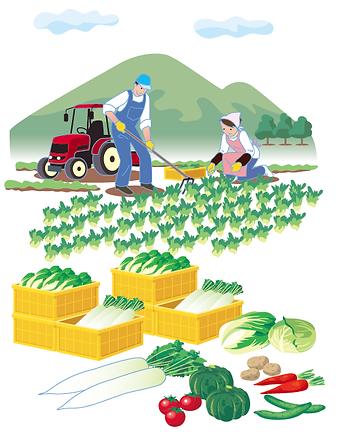 野菜の生産者