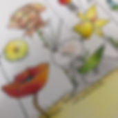 les amis d'Henriette de Bordeaux selon SophieB. Illustratrice BORDEAUX