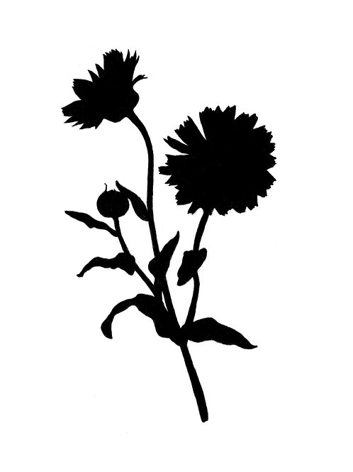 Blütenmousse