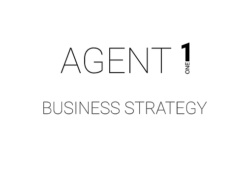 Business Strategy Call (1 hour)