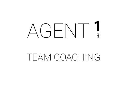 Team Coaching (1 hour)