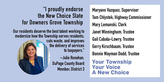 Julie Renehan, DuPage County Board