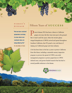 PDGWSS 15 Years of Success brochure