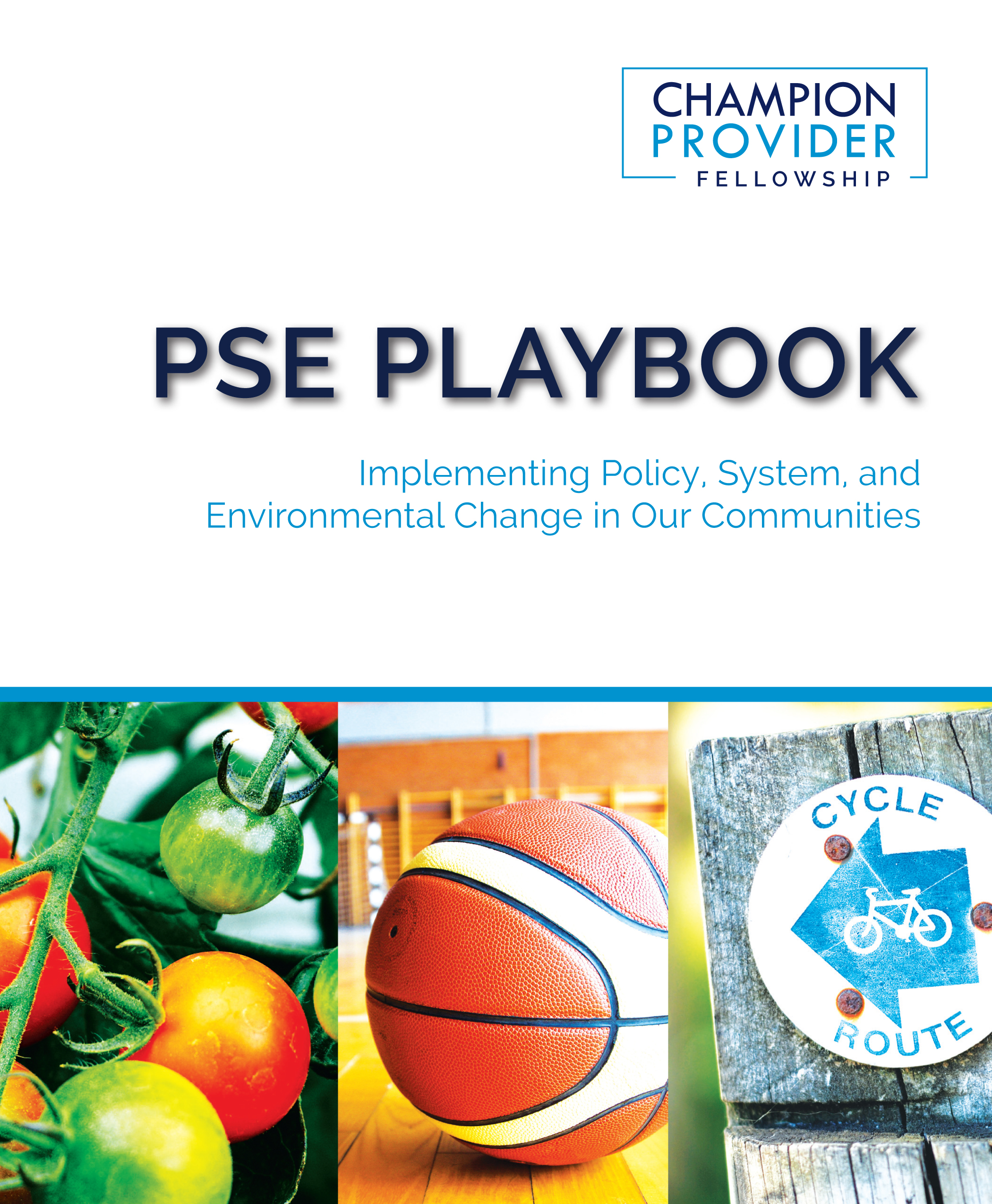 PSE Playbook