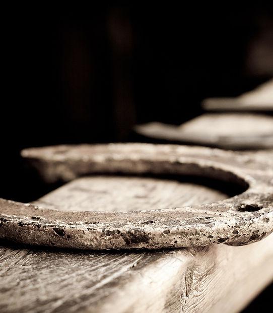 horse-shoe-110987_1920.jpg