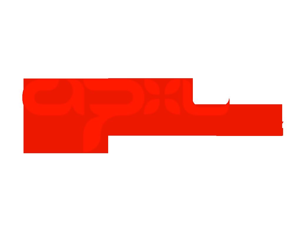 Aerial PXL LLC_logo