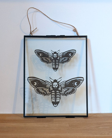 Deathshead moths
