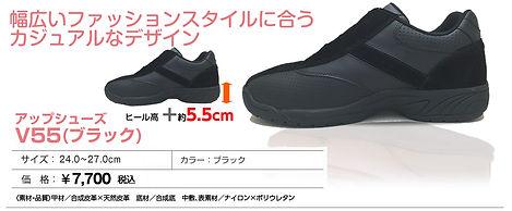 item_UP_55bl.jpg