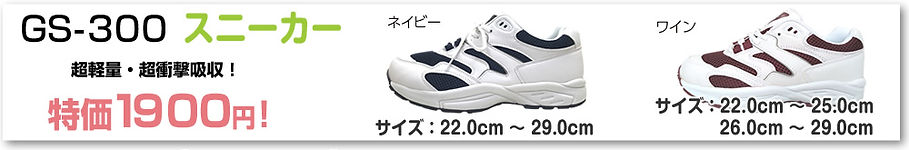item_gs300.jpg