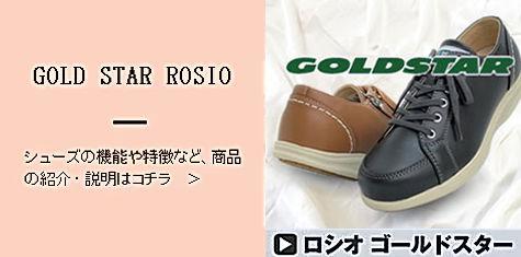 item-gs.jpg