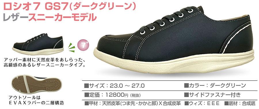 item_GS-dg_01.jpg