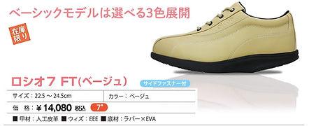 item_FT_be.jpg