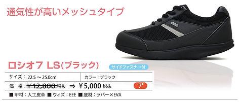item_LS_bl.jpg