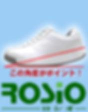 rosio_icon.jpg