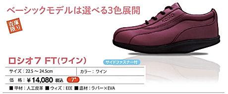 item_FT_w.jpg