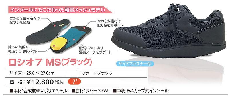 item_MS_bl.jpg