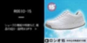 item-r15.jpg