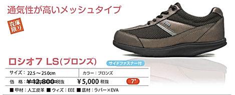 item_LS_br.jpg