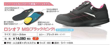 item_MS_bp.jpg